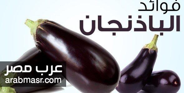 فوائد الباذنجان للجسم 5 فوائد مهمة وبعض النصائح لصحة افضل   شبكة عرب مصر